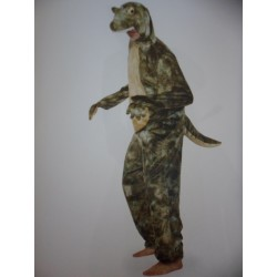 Crocodile adulte