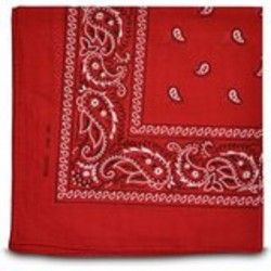Foulard rouge de cow boy