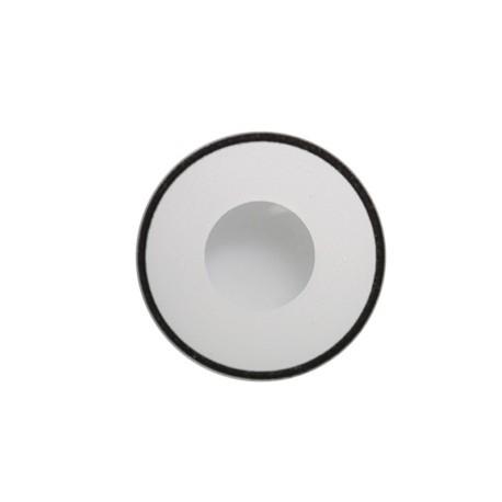 lentilles 12 mois msn white