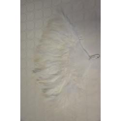 Éventail plume